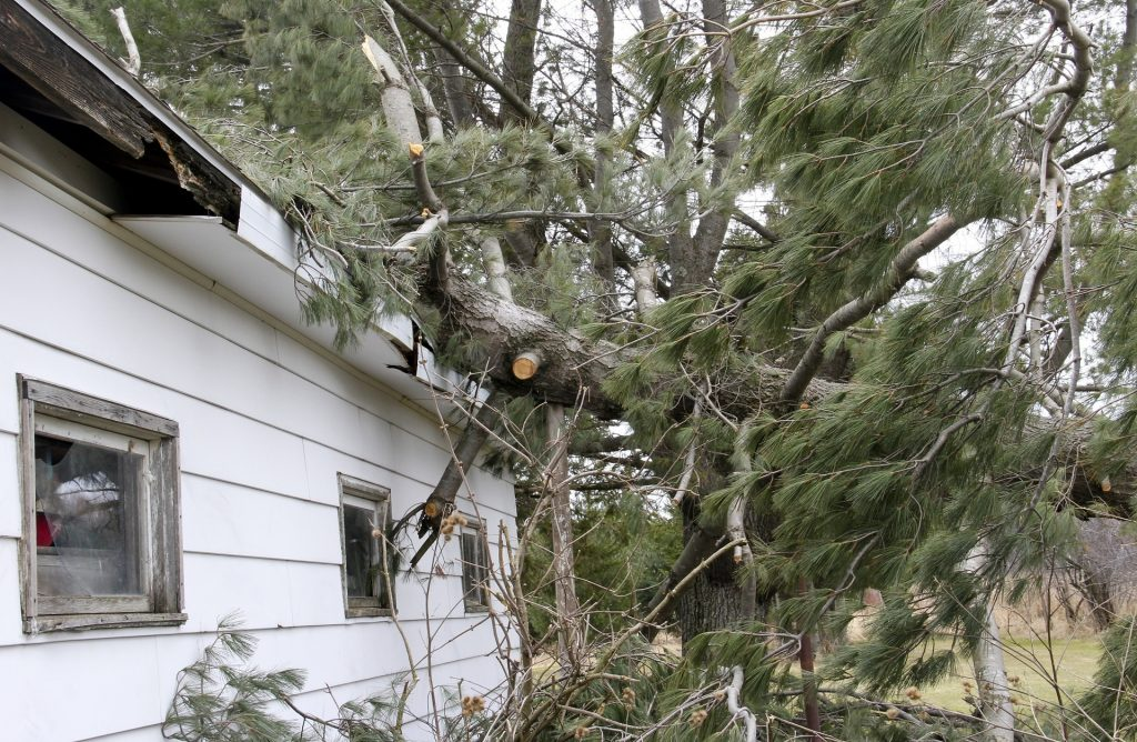 Top Areas to Check After Severe Wind Storms